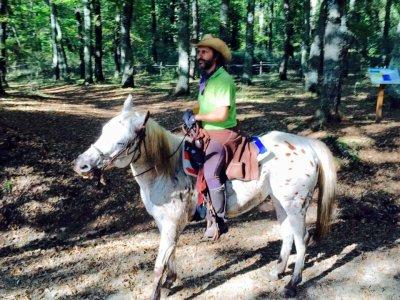 Passeggiata a cavallo (1 ora) , Manziana