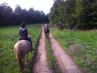 Trekking a cavallo ( 1 giorno) , Manziana