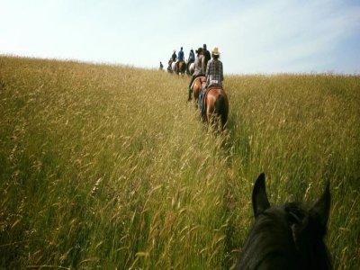 Passeggiata a cavallo a Formello di 1 ora