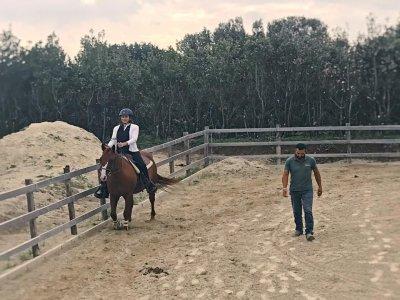 Lezione d'equitazione a Formello di 1 ora
