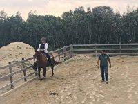 Lezione d'equitazione (1ora), Formello