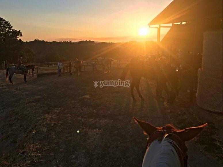 al tramonto rientra presso il manegio e ammira questo spettacolo con il nostro team