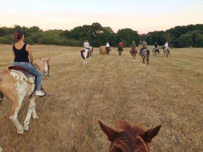 Trekking a cavallo a Formello di 4 ore
