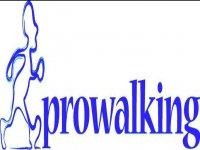 Prowalking Trekking