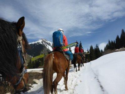 Ski Dragging(2h),Campitello di Fassa