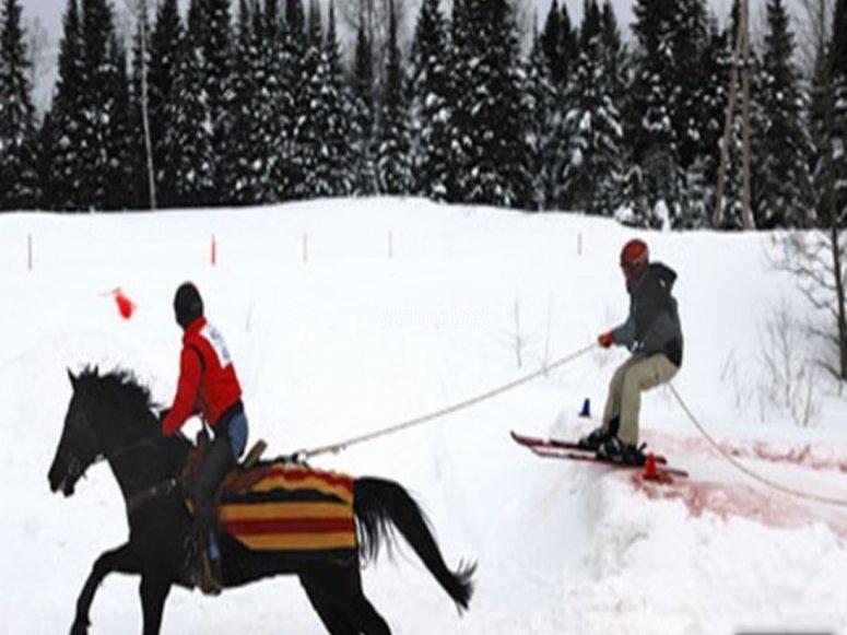 sci o snowboard l'avventura è assicurata