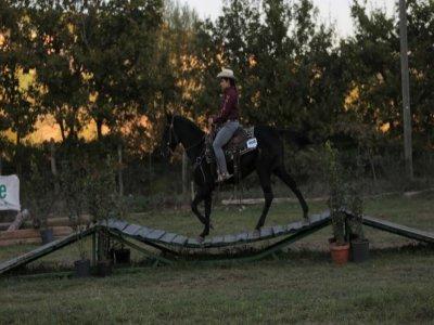 Lezione d'equitazione (1h) , Roma