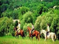Passeggiate a cavallo a Trabia