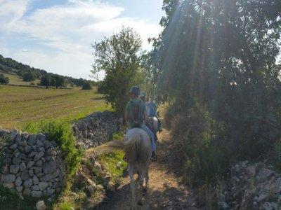 Passeggiata a cavallo (1h), Ragusa