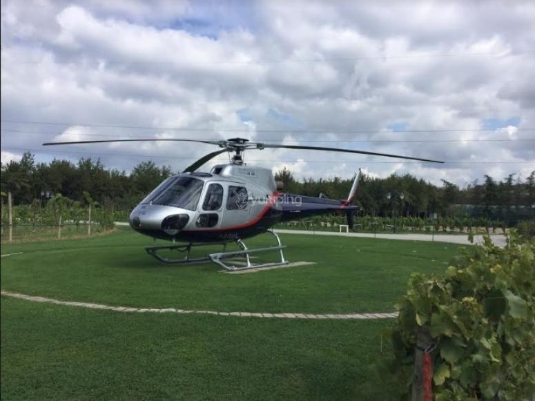sorvola territori fantastici con i nostri elicotteri