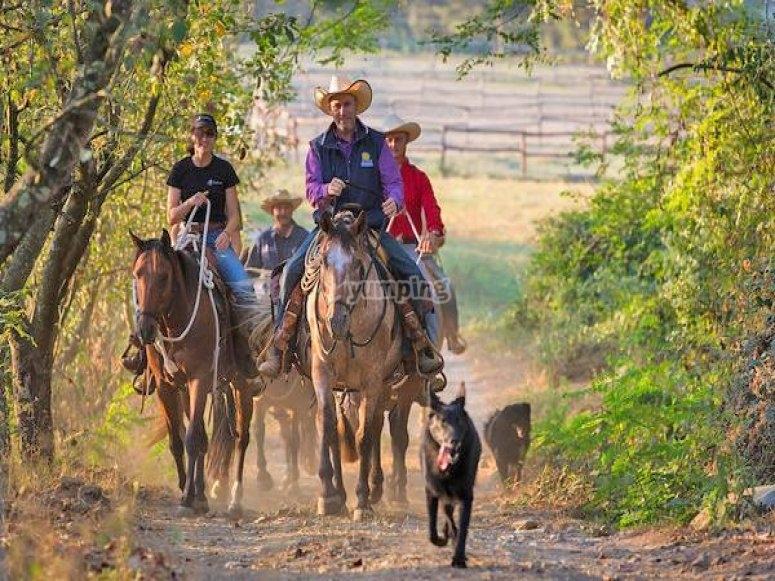cavalcata equitazione naturale