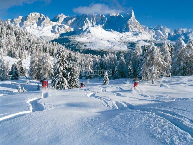 vieni a vivere l'incanto della neve con noi!