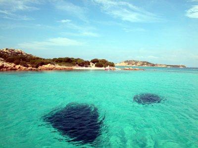 Orso Diving Escursione in Barca