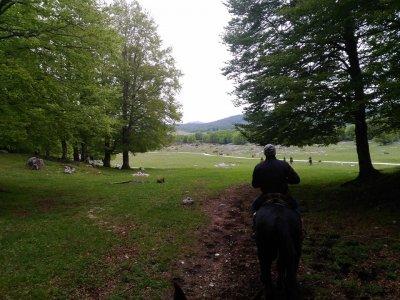 Trekking a cavallo (1gg), Tagliacozzo