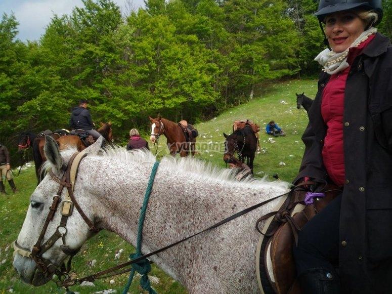i nostri cavalli sono meravigliosi
