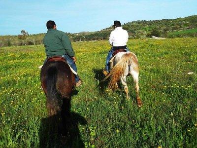 Passeggiata a cavallo (1h), Siracusa