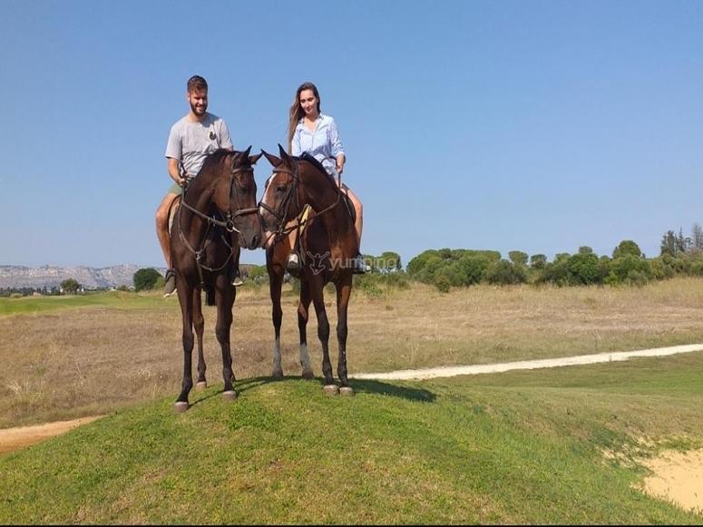 cavalli felici