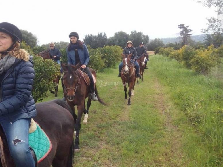 scampagnata equestre
