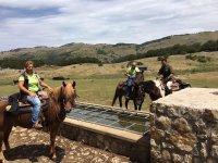 i nostri cavalli si riposano un po' prima di ripartire