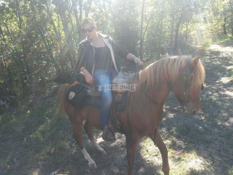 i nostri cavalli sono bellissimi