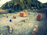 Un campo per divertirsi