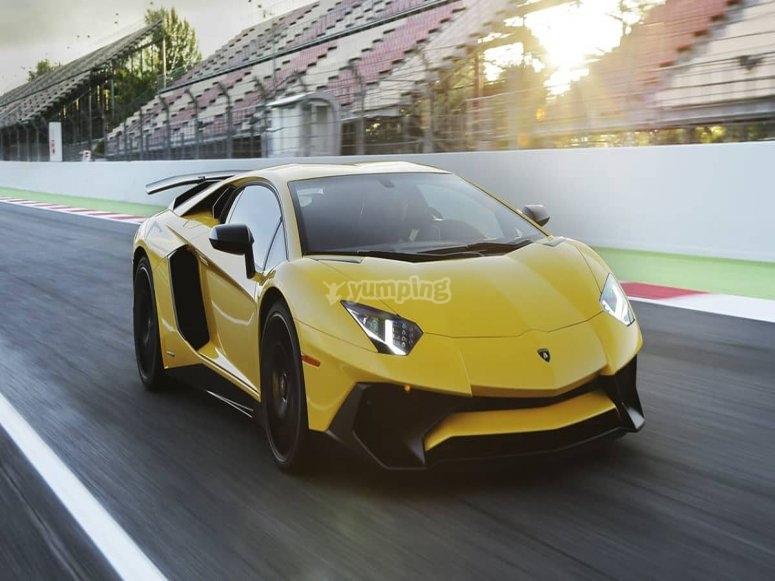 sfreccia su una Lamborghini
