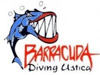 Barracuda Diving Ustica
