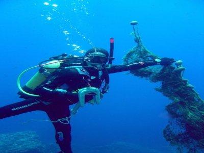Tortuga Diving Ustica