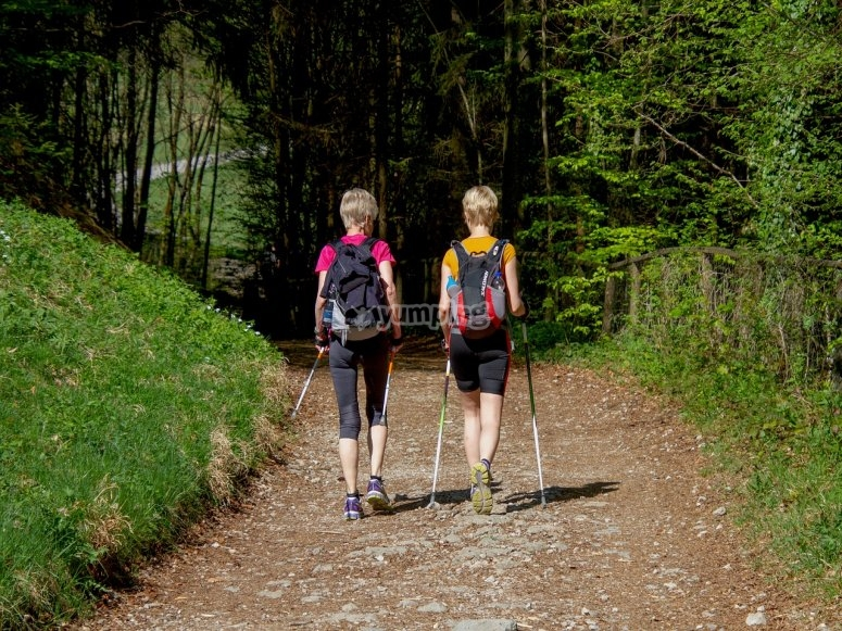 A passeggio nei boschi