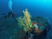 sub-scuba diving