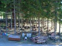 Canile nella pineta