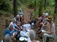 Pausa pranzo nel bosco