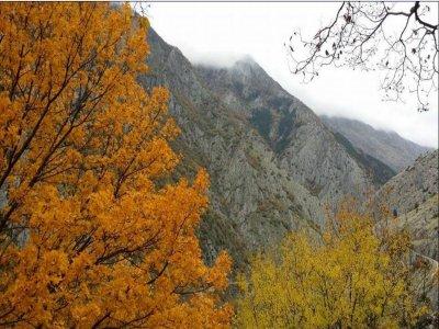 Abruzzo Mountains Wild