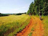 Via Francigena in Mountain Bike