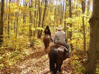 Quirk Valley Passeggiate a Cavallo