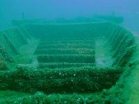 Mondi subacquei
