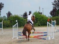 salto ostacoli
