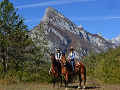 Ranch Horse's Soul