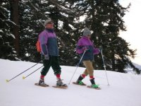 On the Snowshoes