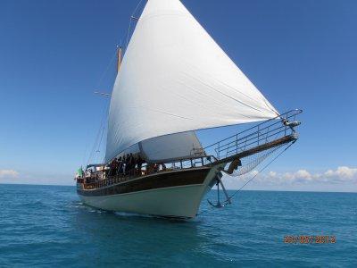 Blu Sailing Green