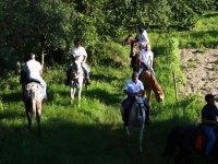 Trekking A Cavallo Nella Natura