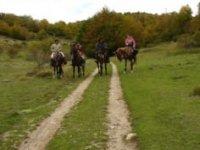 Vieni A Cavallo Con I Tuoi Amici