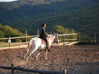noi e i cavalli