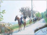 Attivita Sportive a Cavallo