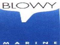 Blowy Marine Vela