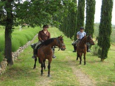 Rendola Riding