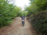 Mountain Bike CAI