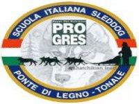 Scuola Italiana Sleddog