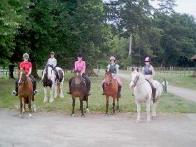 Vacanze Equestri