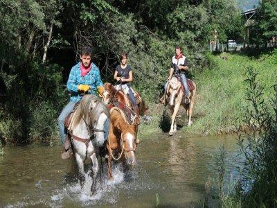 Equitazione Alpina